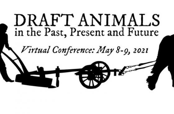 Draft Animals - Past, Present and Future