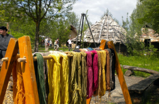 Dyeing with natural plants